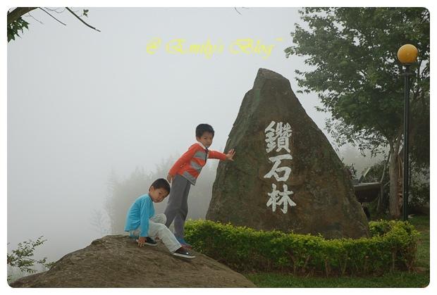 DSC_8561